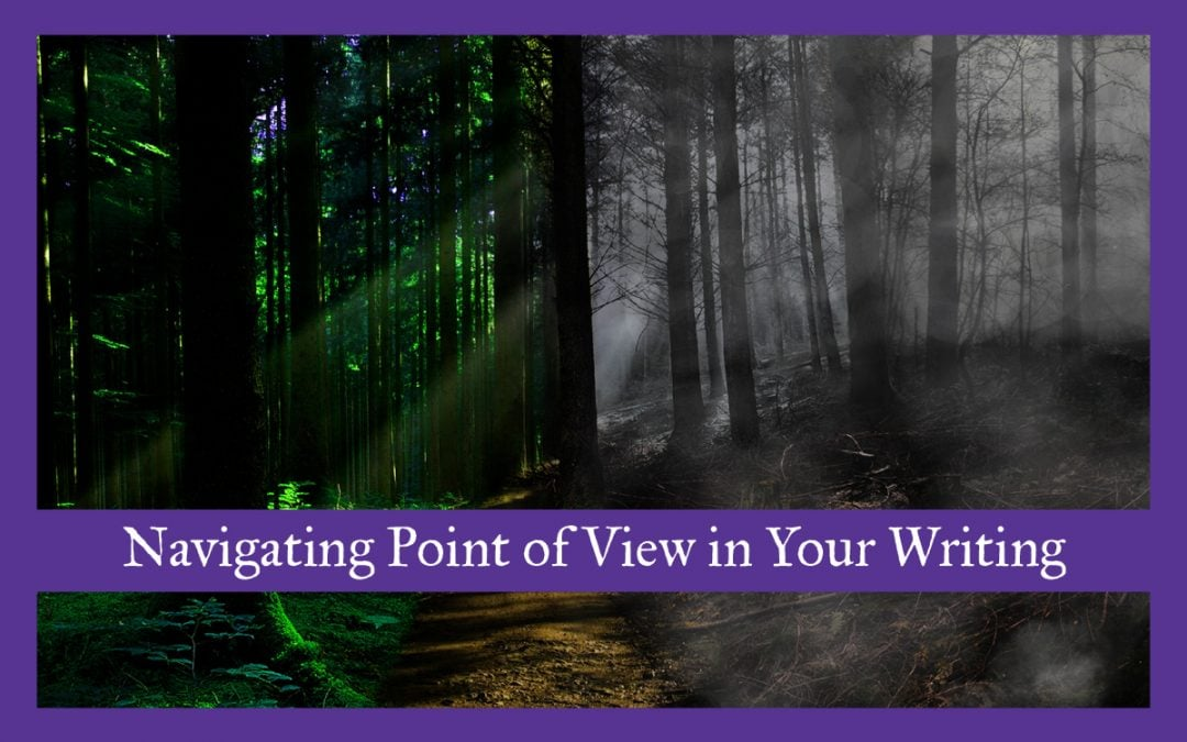 Navigating Point of View in Your Writing